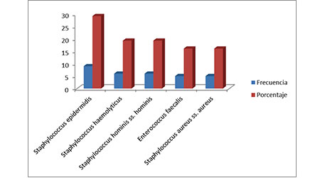 Antimicrobial resistance profiles of bacterial pathogens isolated from the bloodstream in patients of a hospital institution in Montería — Córdoba
