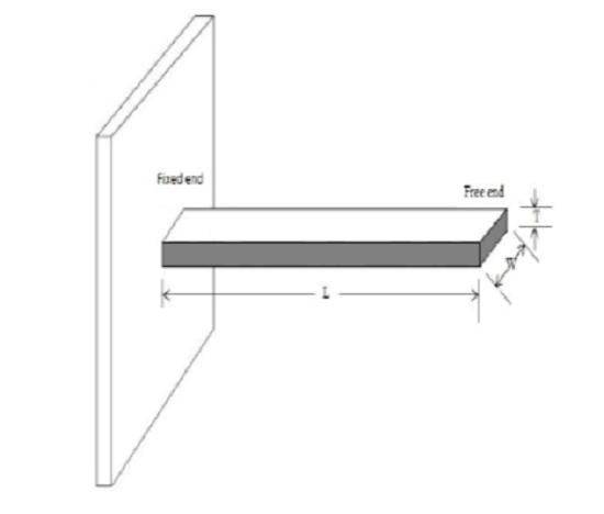 Identification of multiple crack locations in micro cantilever beam by wavelet transforms
